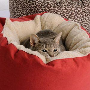Cucce per gatti e lettini